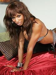 Shemale pornstar Natassia Dreams performs a seductive striptease