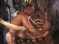 Ass fucking while in a sex swing