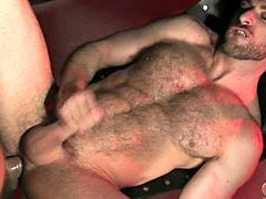 Hairy muscle stud gets fucked hard