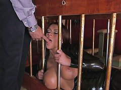 Vivacious Pornstar With Big Fake Tits Enjoying A Hardcore Doggy Style Fuck