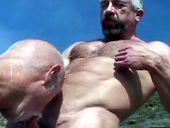 Older gay man gives a head to hairy bear outdoors