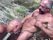 Older gay bear sucking cock outdoors