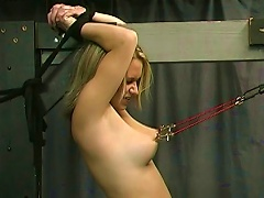 Young Blonde Getting Punished  Bdsm