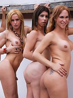 Cowgirl style ass fucking in shemale orgy